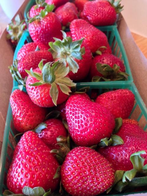 Red, White & Blueberry Tart – Recipe! Image 3