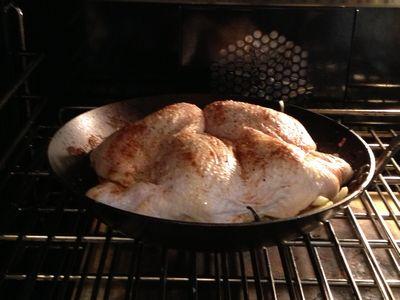 Split Roast Chicken with Lemon Sauce over Pea Orzo 027-thumbnail 300