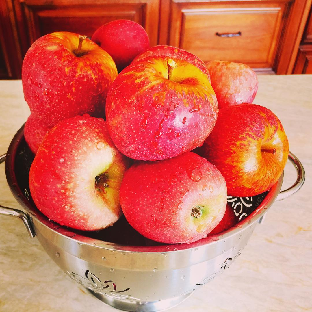 I just Love apple season! Dont you?? livelovelaughfood apples applerecipeshellip