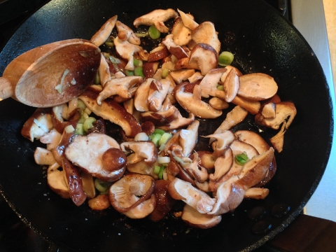 Seared Chicken with Mushroom Pan Sauce 2014-09-05 039 (480x360)