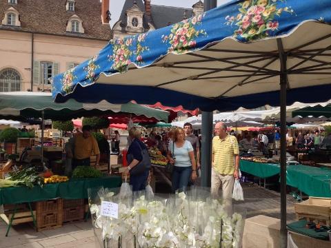 Burgundy 2014 091 (480x360)