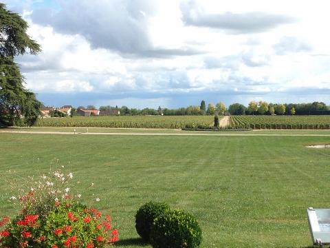 Burgundy 2014 146 (480x360)
