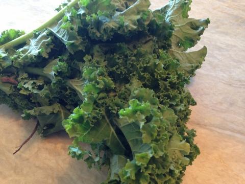 Umami Kale Chips 001 (480x360)