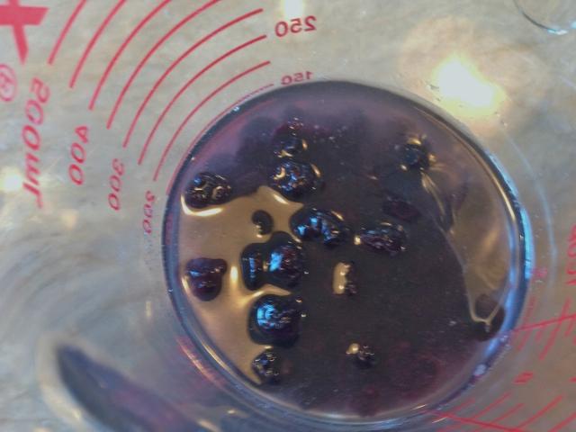 Blueberry Buckwheat Scones 015 (640x480)