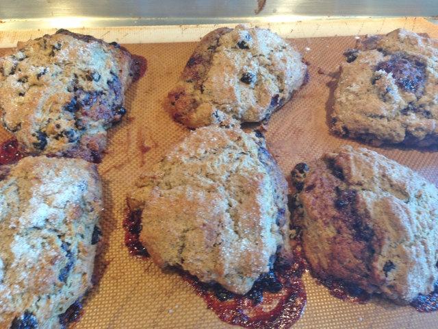 Blueberry Buckwheat Scones 094 (640x480)