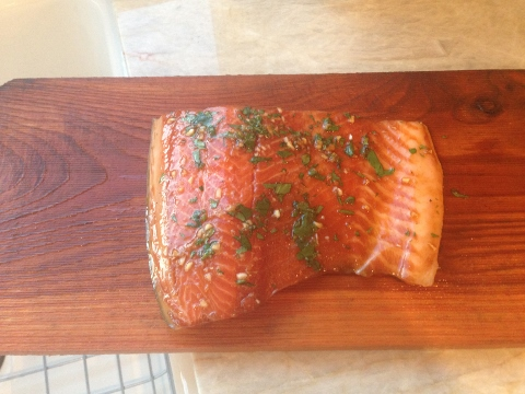 Smoky Asian Grilled Salmon 044 (480x360)