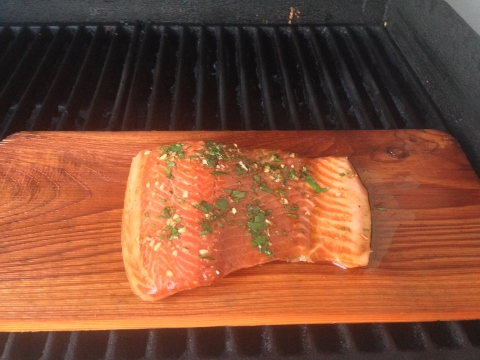 Smoky Asian Grilled Salmon 052 (480x360)
