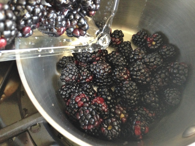 Olive Oil Cake with Blackberry Compote 072 (640x480)