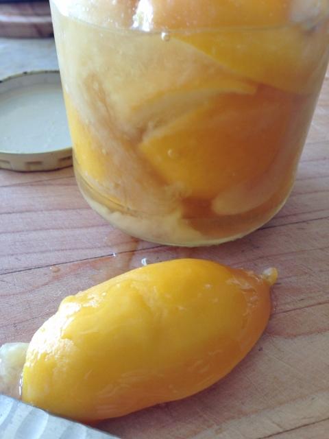Preserved Lemon, Poppyseed & Spelt Cake 042 (480x640)