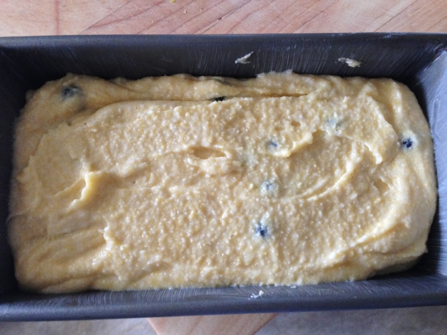 Blueberry Cornmeal Breakfast Cake 049 (640x480)