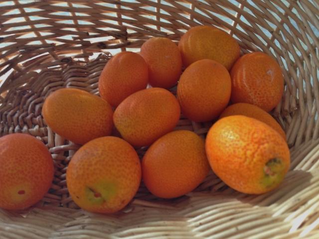 Kumquat & Mint Margarita 001 (640x480)