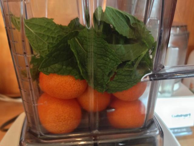 Kumquat & Mint Margarita 010 (640x480)
