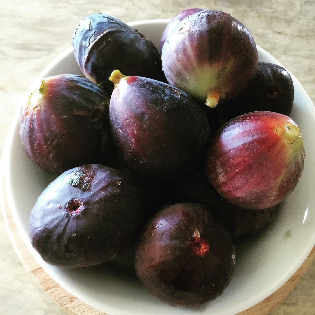 Fresh figs from my garden! Get ready for figalicious recipes!!hellip