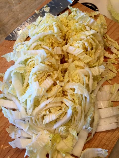 Asian Chicken Salad 010 (480x640)