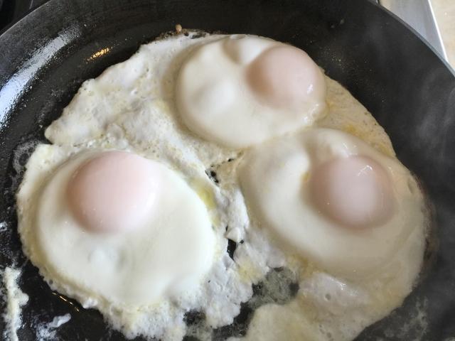 Breakfast Tartine 001 (640x480)