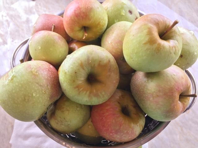 Apple Almond Coffeecake – Recipe! Image 3