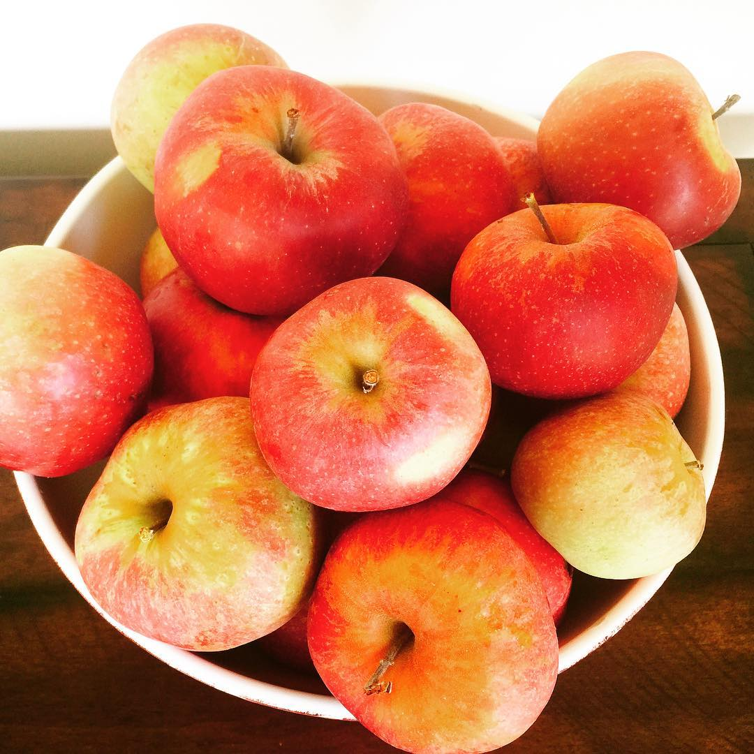 Apple Season is here! Just picked fresh from my tree!hellip