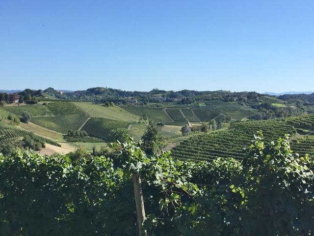 Piedmont, Italy 074 (640x480)