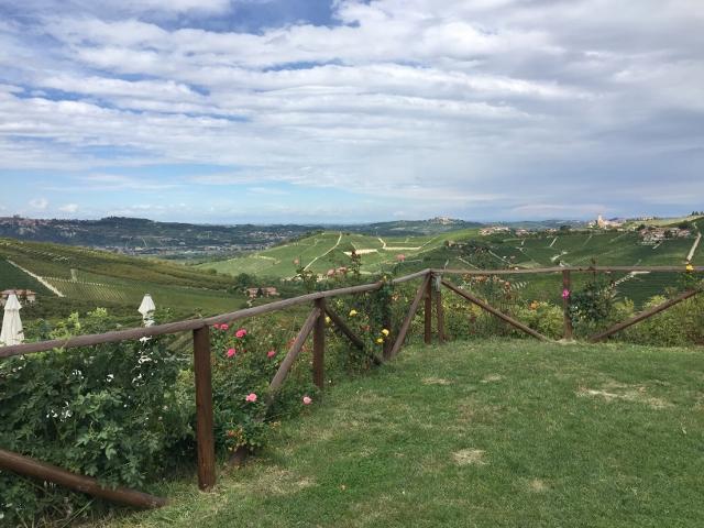 Piedmont, Italy 280 (640x480)