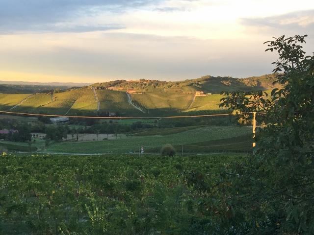 Piedmont, Italy 307 (640x480)