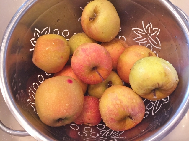 Slow-Cooker Chai Applesauce – Recipe! Image 3