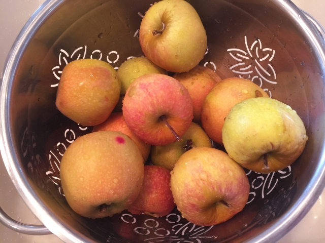 Slow Cooker Chai Applesauce 001 (640x480)
