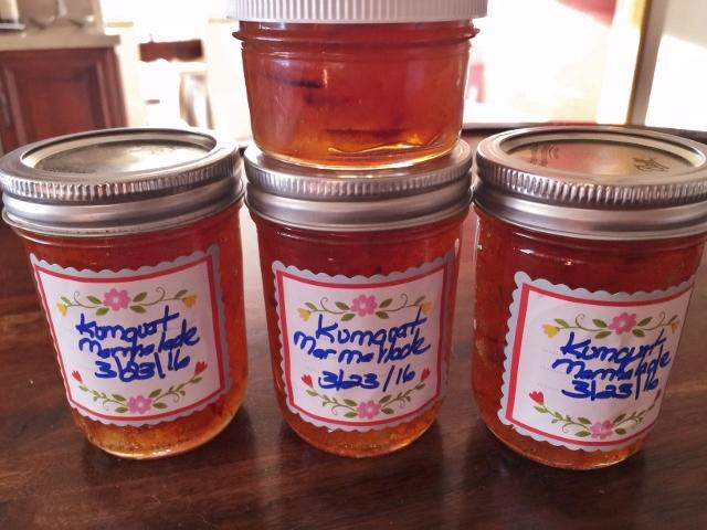 Old Fashioned Kumquat Marmalade – Recipe! Image 2