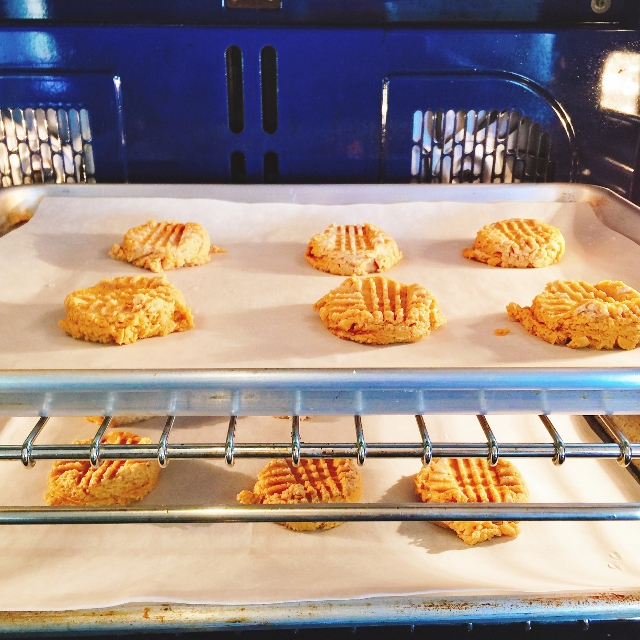 Double Peanut Butter Cookies 028 (640x640)