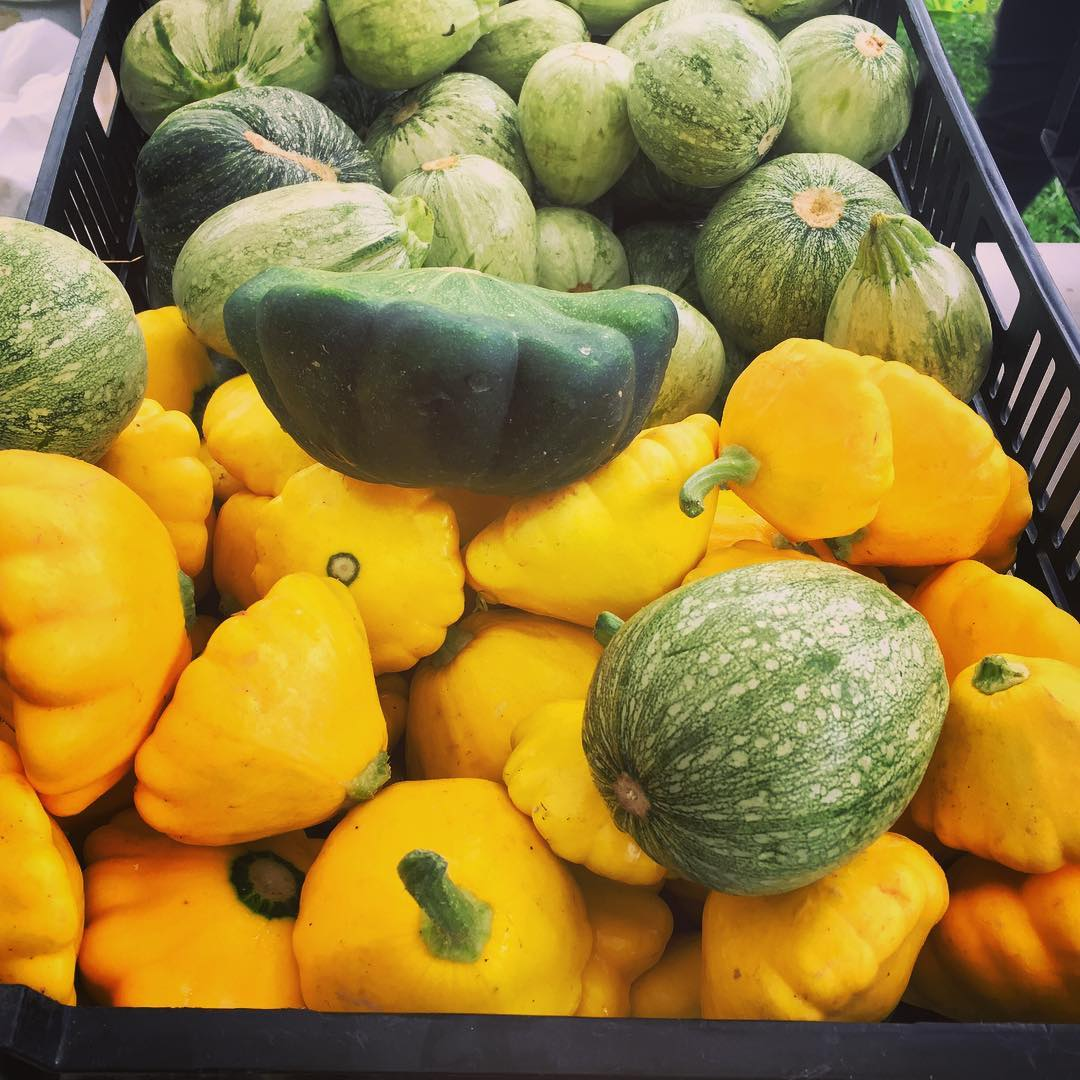 Sag Harbor Farmers Market! Patty Pan Squash Season! livelovelaughfood vacationhellip