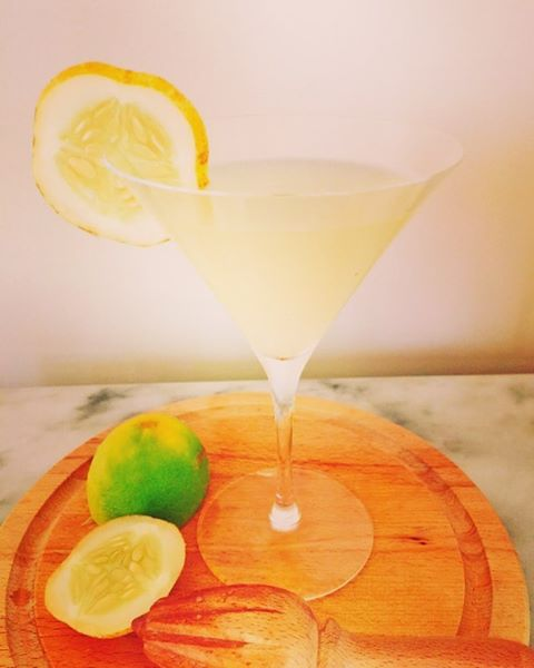 Cheers! Lemon Cucumber Vodka Gimlet! Recipe just posted on myhellip