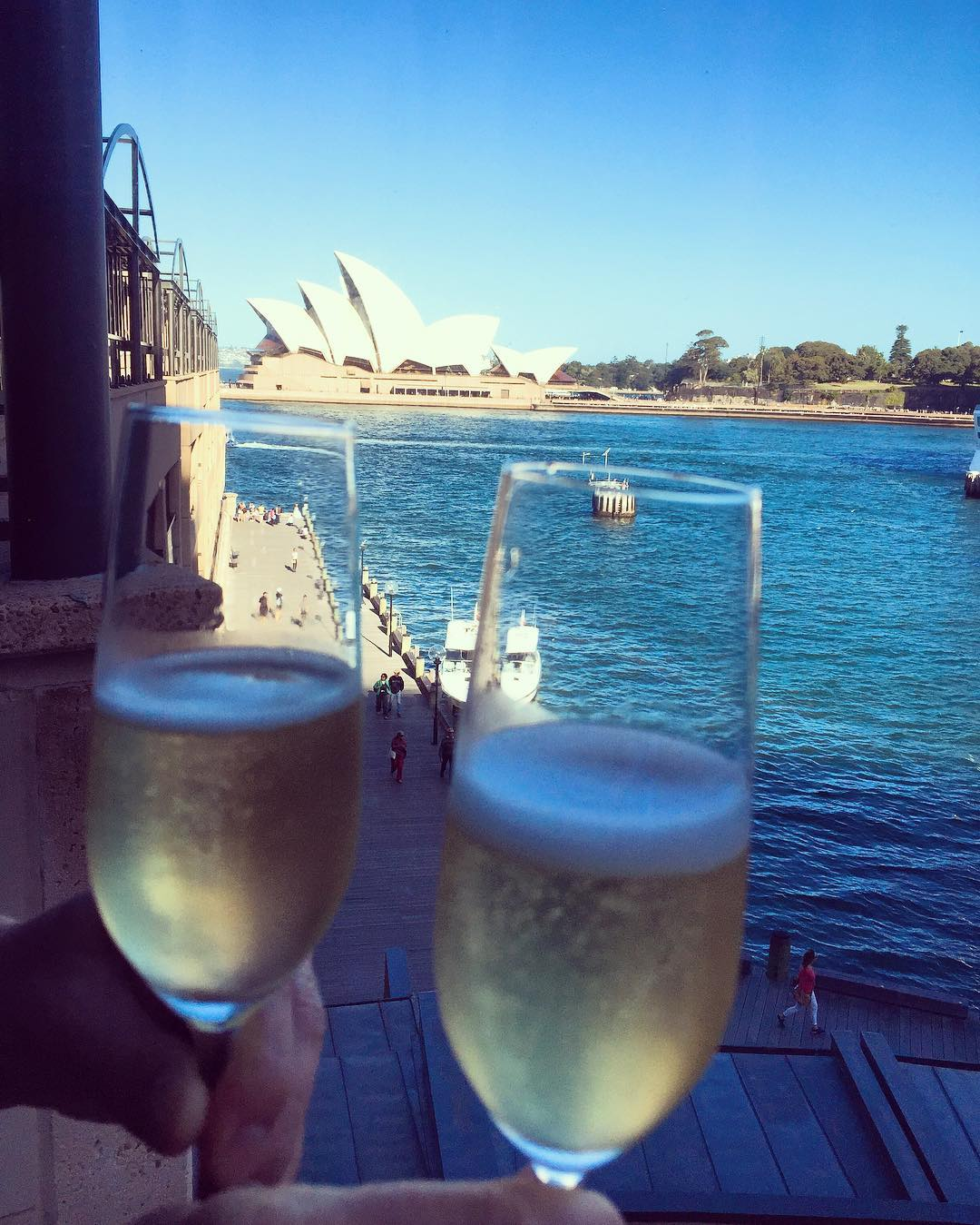 Cheers! Another day in Paradise! itravel Australia sydneyharbour livelovelaughfood