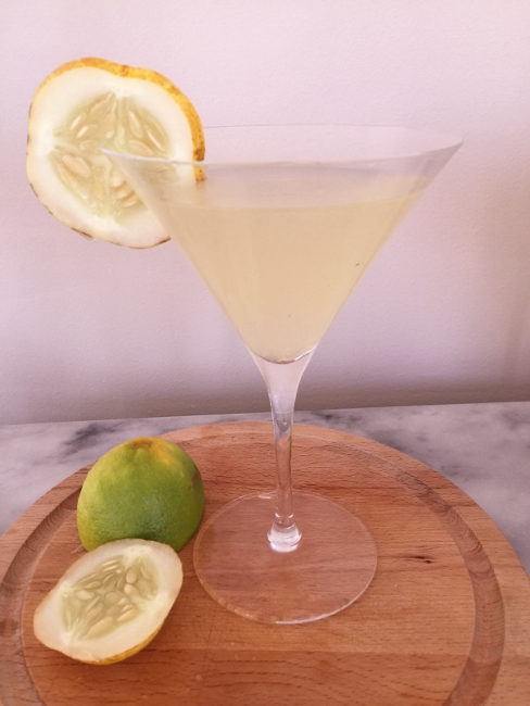 lemon-cucumber-gimlet-038-488x650