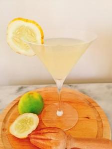 lemon-cucumber-gimlet-052-488x650