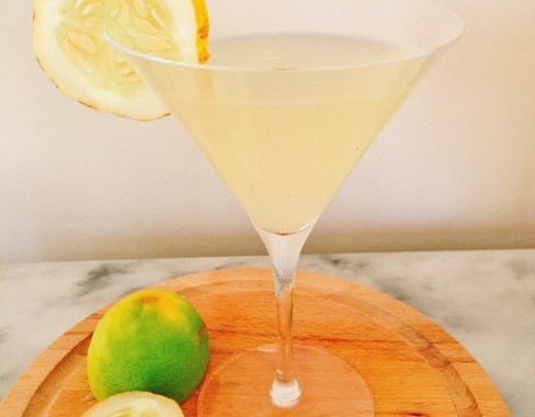 Lemon Cucumber Vodka Gimlet – Recipe!