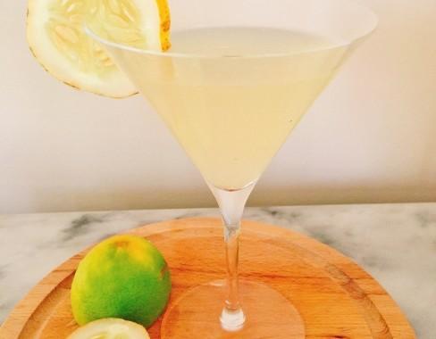 Lemon Cucumber Vodka Gimlet – Recipe!