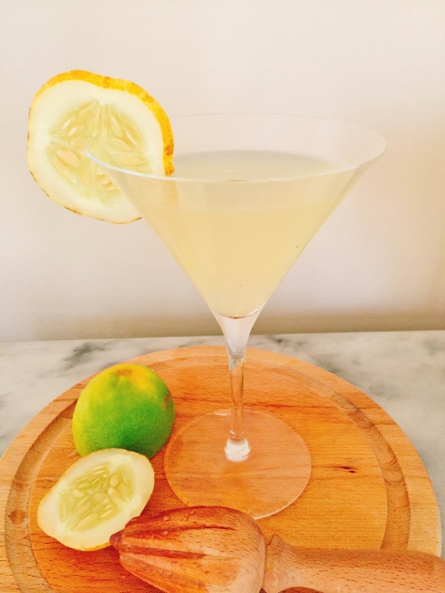 Lemon Cucumber Vodka Gimlet – Recipe! Image 1