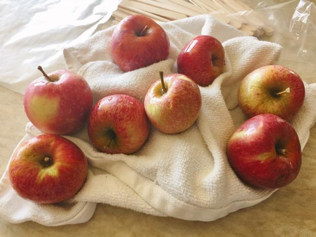 mini-microwave-caramel-apples-010-650x488
