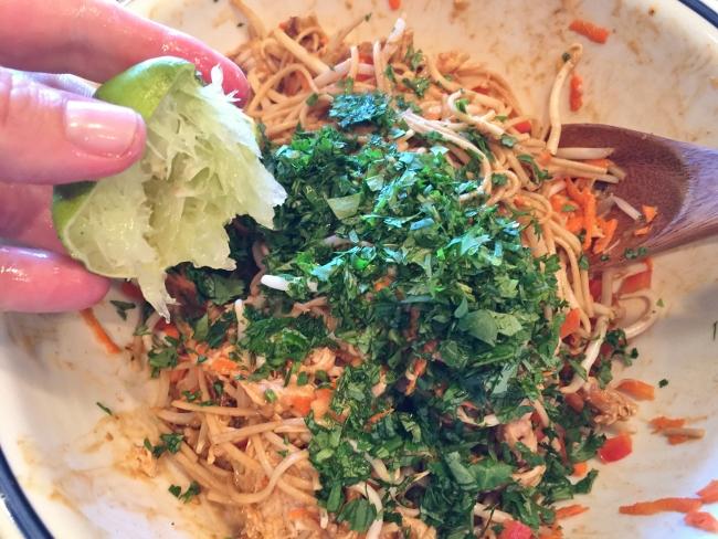 soba-noodle-chicken-eggplant-salad-with-thai-peanut-dressing-039-650x488