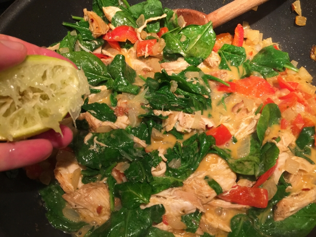 Chicken & Vegetable Thai Curry 023 (650x488)