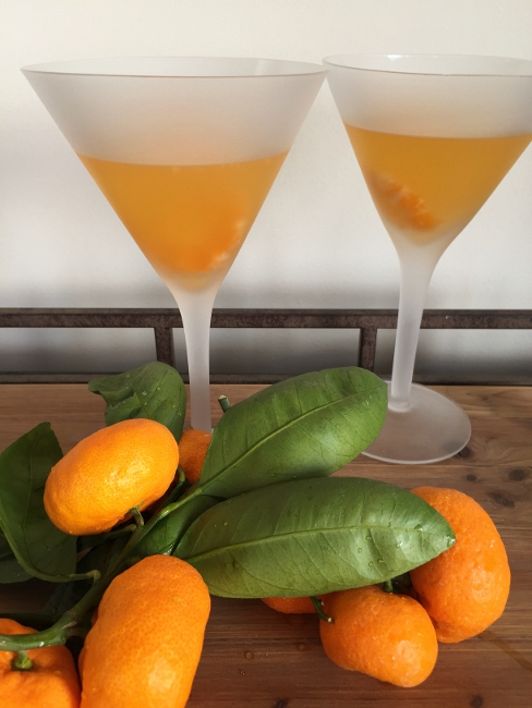 tangerine-martinis-050-488x650