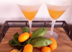 tangerine-martinis-053-650x473