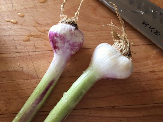 Shrimp & Green Garlic Grits – Recipe! Image 3