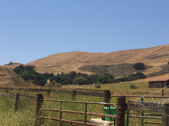 Meet the Farmers & Growers of California's Central Coast! Image 1