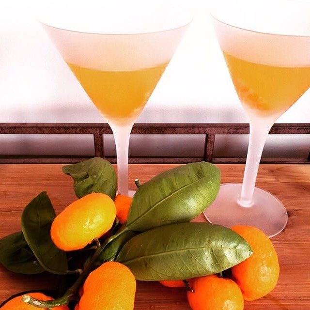Cocktail Time  Tangerine Martinis! Recipe on blog! livelovelaughfood martinishellip