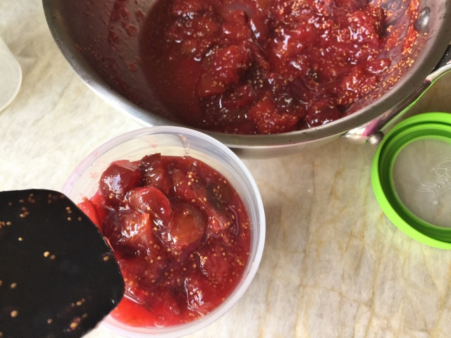 Lemon Fig Freezer Preserves – Recipe! Image 2
