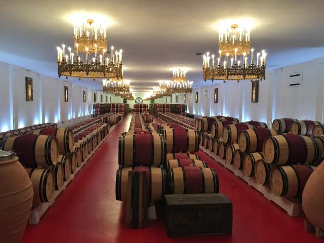 Wine, Dine & Explore Bordeaux, France! Image 18