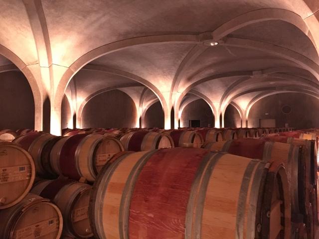 Wine, Dine & Explore Bordeaux, France! Image 1